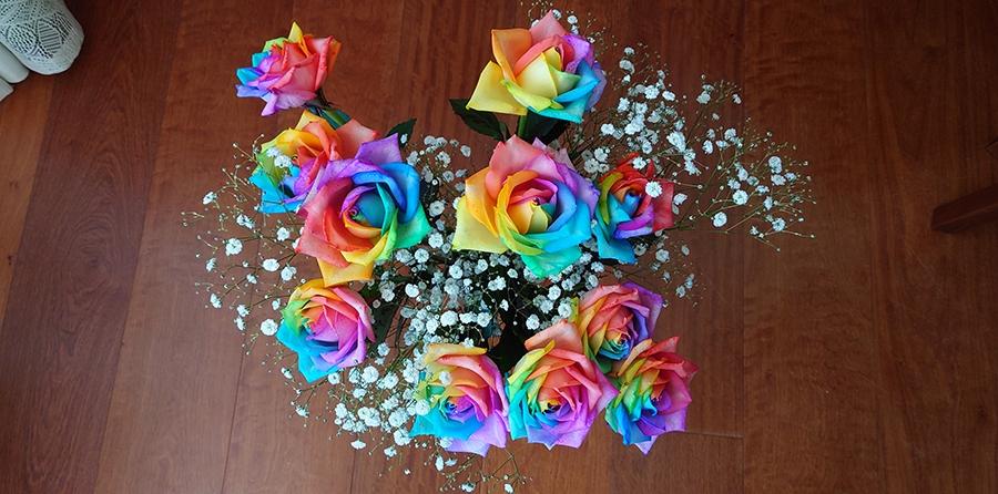 七色に輝く奇跡の花は、未来への可能性を秘めている